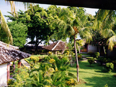 Garten und Strand am Hotel in Lovina Beach