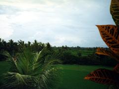 Umgebung von Ubud auf Bali